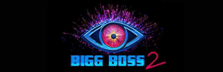 bigg-boss-telugu-season-2-vot-logo