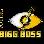 Bigg Boss Voting ( Vote Online) | Contestants | Nominations | Eliminations | Missed Call