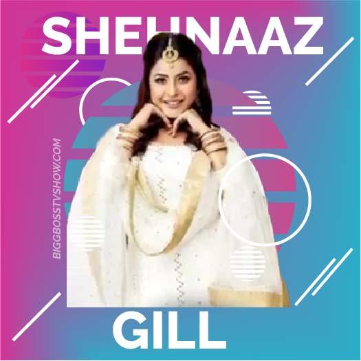 shehnaaz gill bigg boss 13 contestant