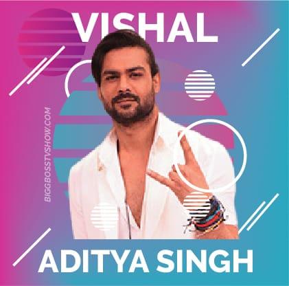 vishal aditya singh bigg boss 13
