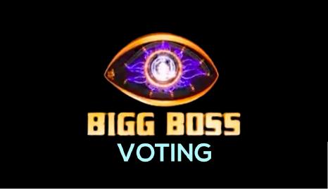 bigg boss voting 14